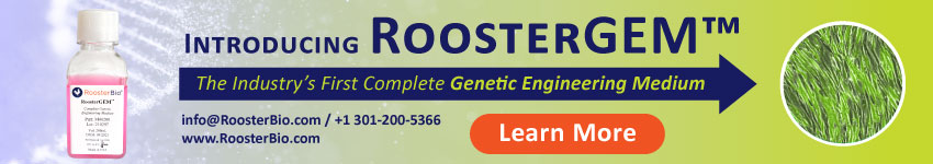 Rooster DevServices